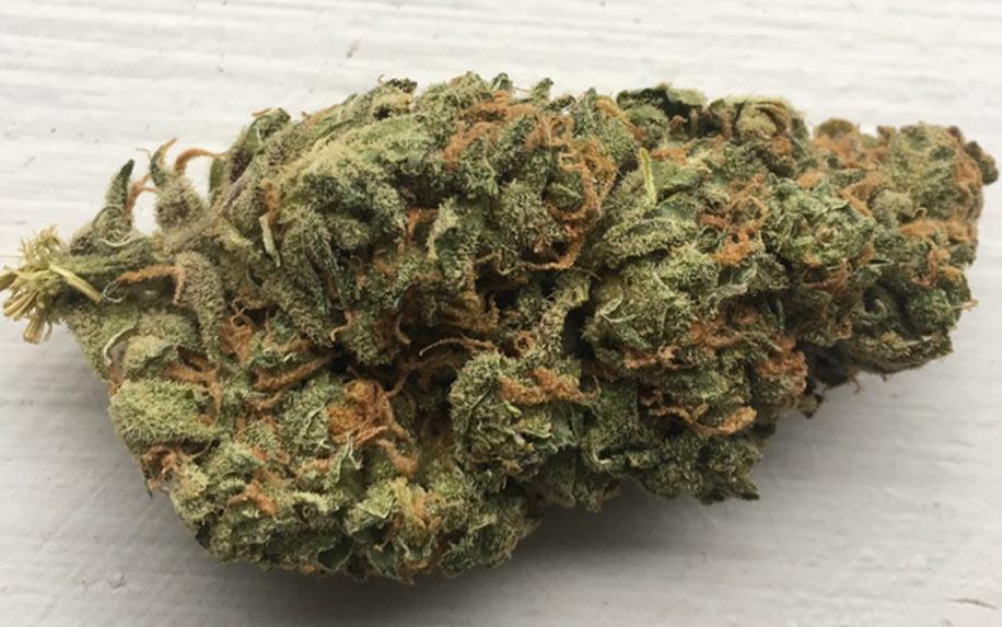 weed/cannabis bud strawberry diesel
