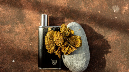 8 Vapes That Can Use Flower and Concentrate